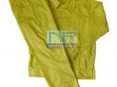 Quần áo kaki ND màu vàng chanh
